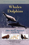 Cove rof whales dolphins and other marine mammals thumbnail
