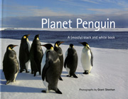 Planet penguin cover link